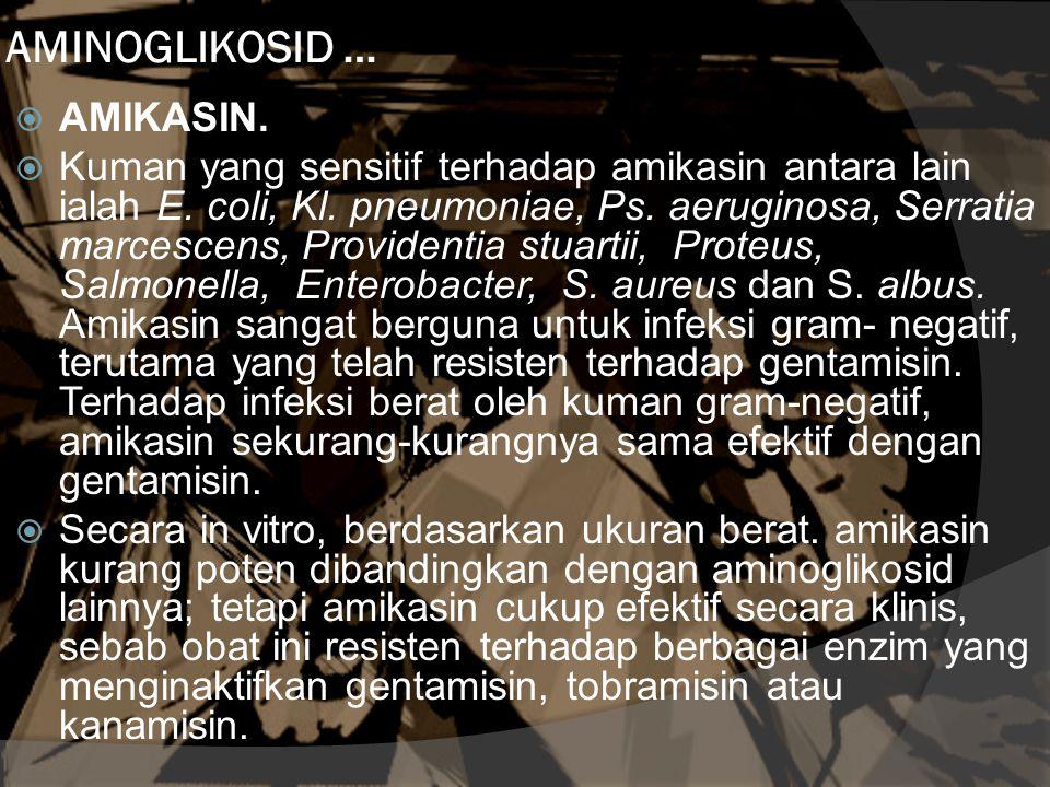 AMINOGLIKOSID … AMIKASIN.