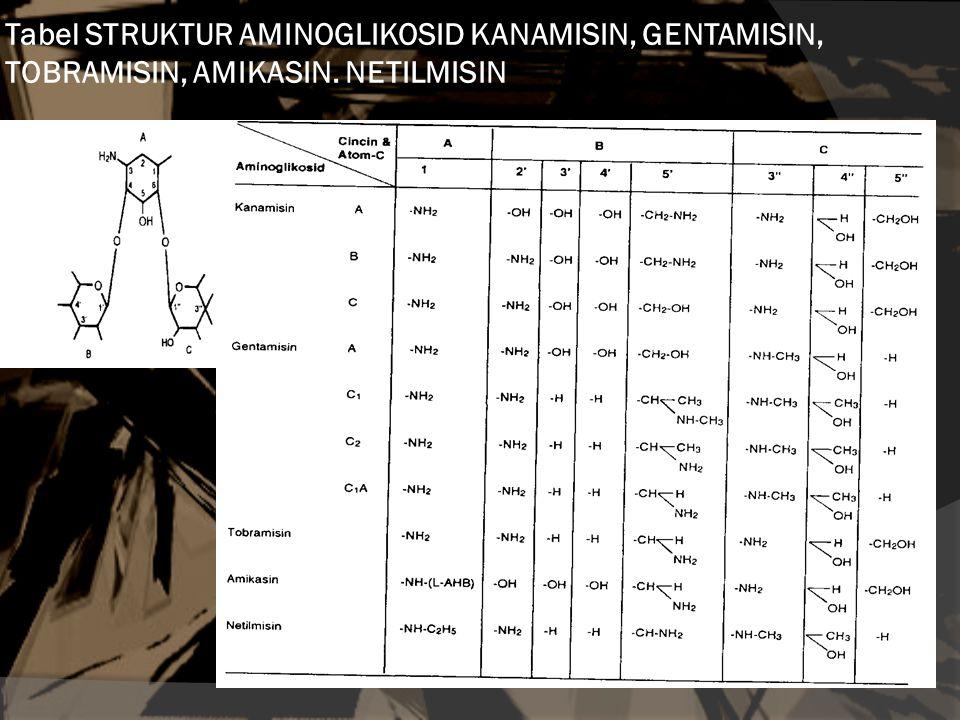 Tabel STRUKTUR AMINOGLIKOSID KANAMISIN, GENTAMISIN, TOBRAMISIN, AMIKASIN. NETILMISIN