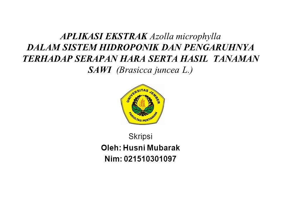 Skripsi Oleh: Husni Mubarak Nim: 021510301097