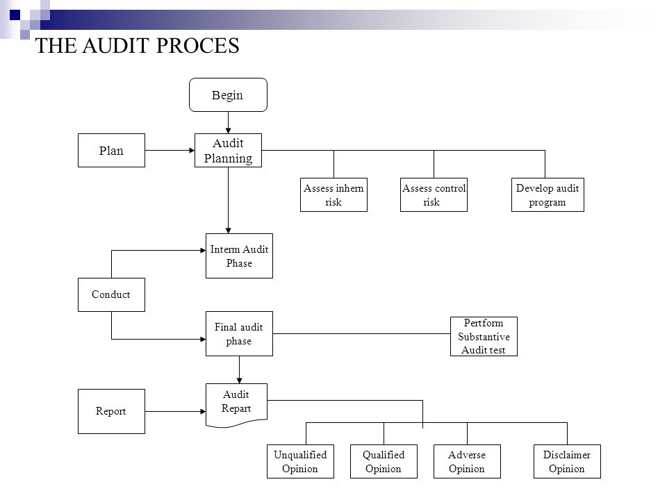 THE AUDIT PROCES Begin Audit Plan Planning Assess inhern risk