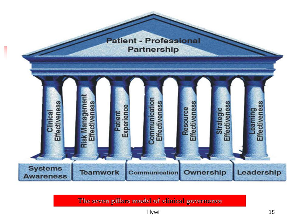 The seven pillars model of clinical governance