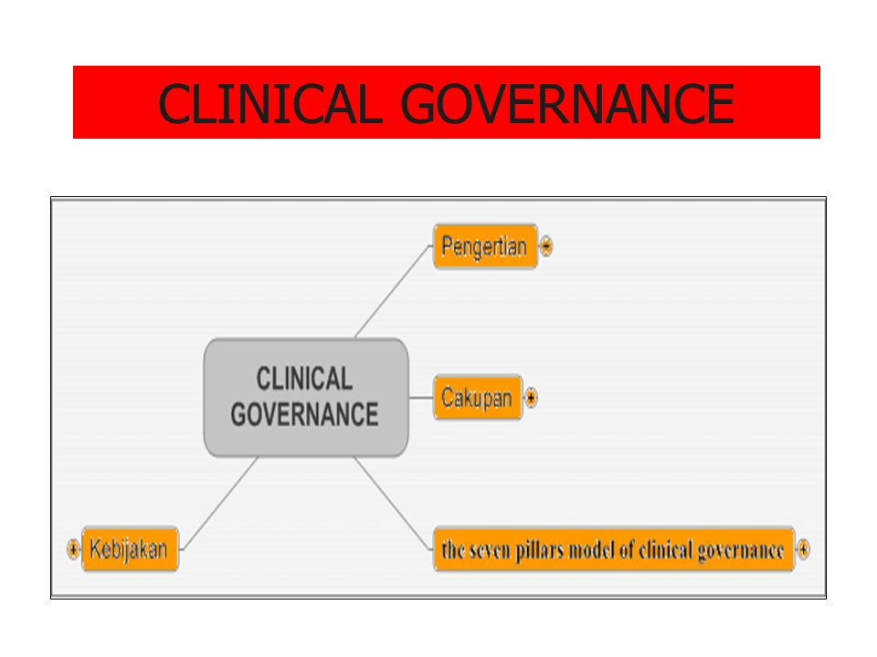 CLINICAL GOVERNANCE Lilywi