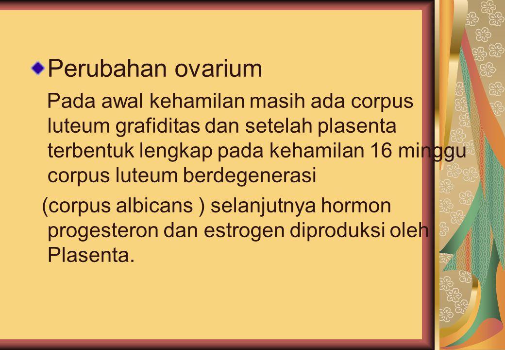 Perubahan ovarium