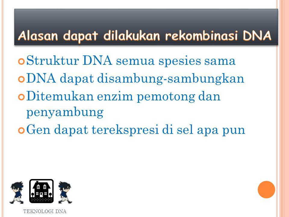 Alasan dapat dilakukan rekombinasi DNA