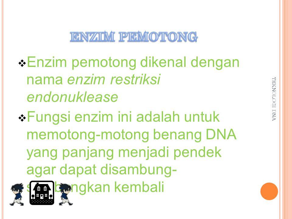 Enzim pemotong dikenal dengan nama enzim restriksi endonuklease