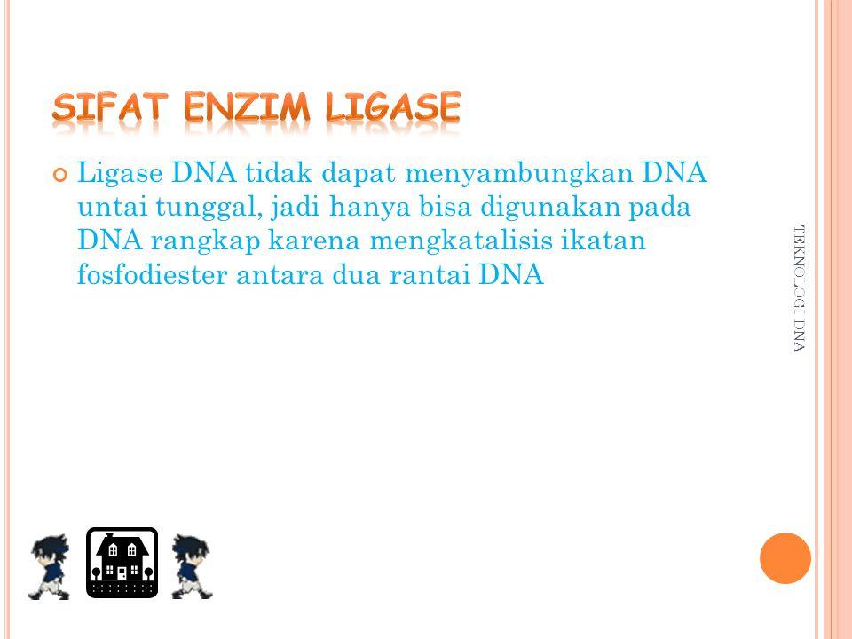 Sifat enzim ligase