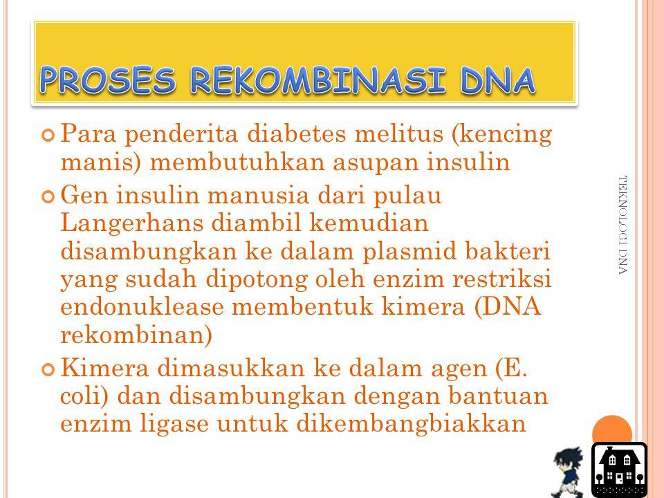 PROSES REKOMBINASI DNA