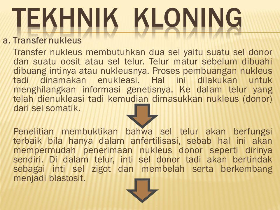 TEKHNIK KLONING a. Transfer nukleus