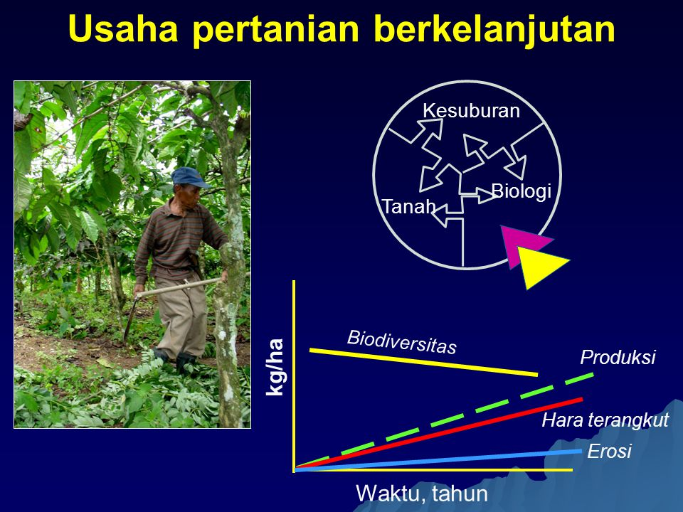 Usaha pertanian berkelanjutan