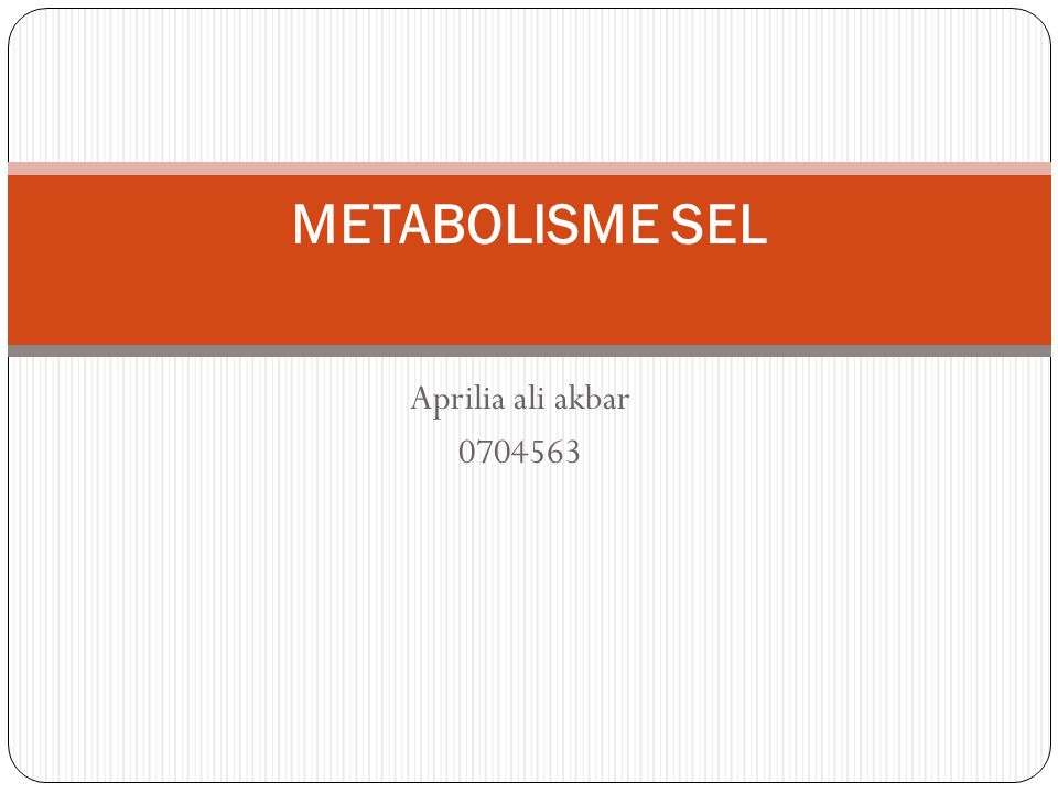 METABOLISME SEL Aprilia ali akbar 0704563