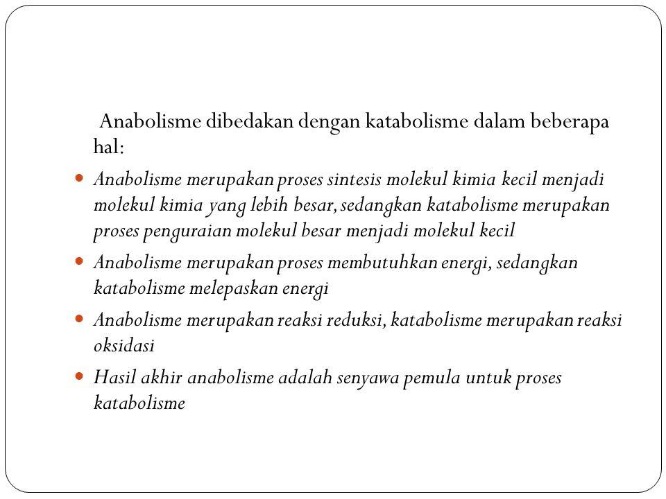 Anabolisme dibedakan dengan katabolisme dalam beberapa hal: