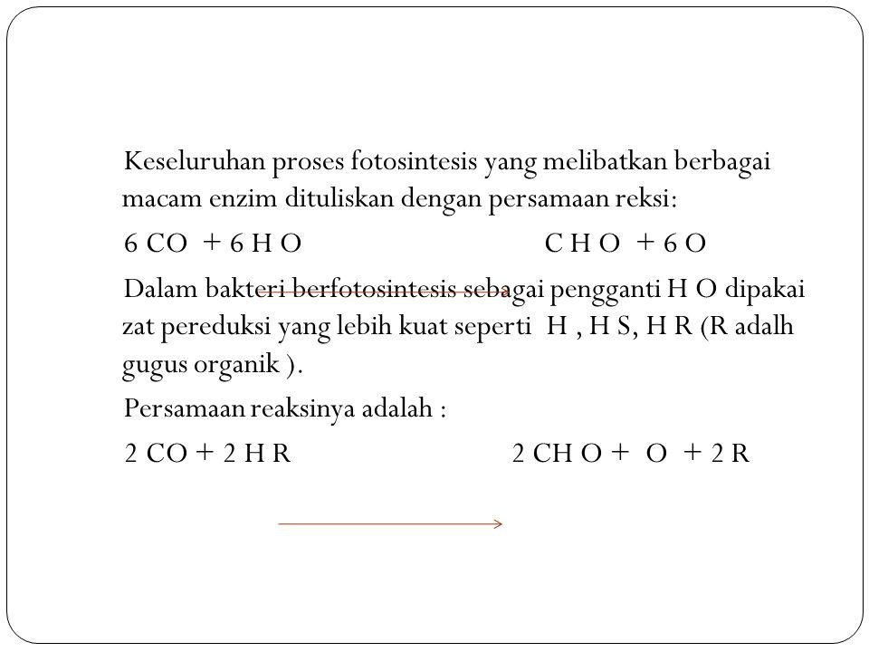 Keseluruhan proses fotosintesis yang melibatkan berbagai macam enzim dituliskan dengan persamaan reksi: 6 CO + 6 H O C H O + 6 O Dalam bakteri berfotosintesis sebagai pengganti H O dipakai zat pereduksi yang lebih kuat seperti H , H S, H R (R adalh gugus organik ).