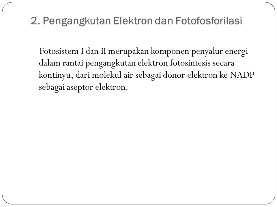 2. Pengangkutan Elektron dan Fotofosforilasi