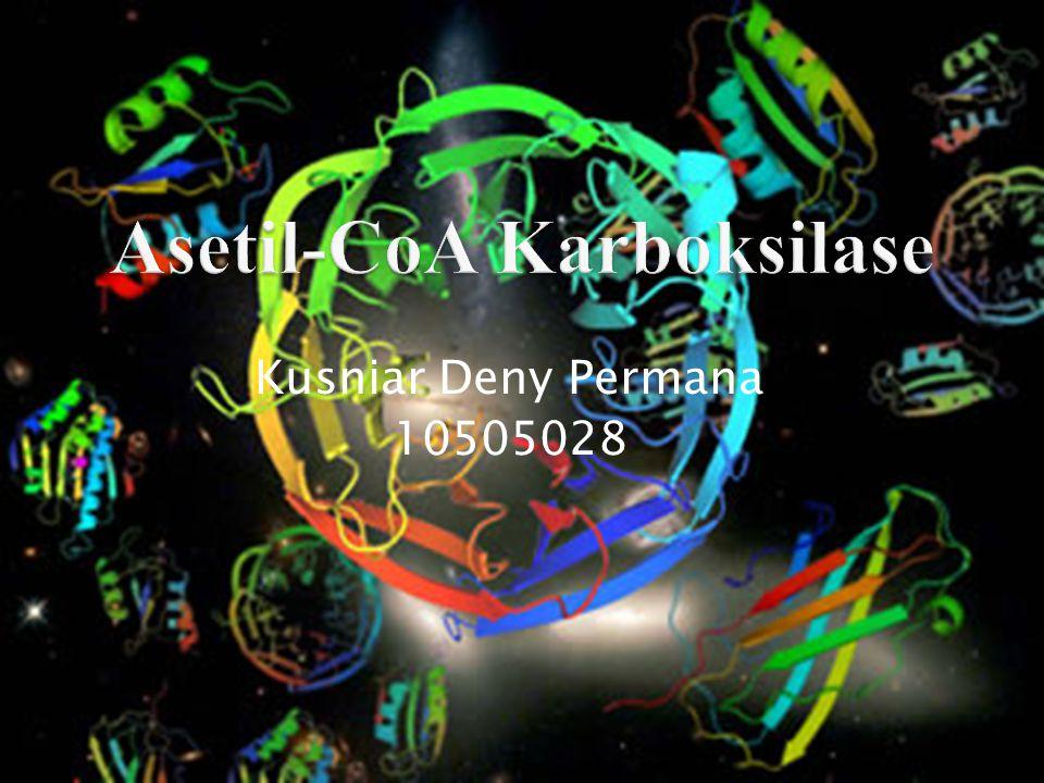 Asetil-CoA Karboksilase