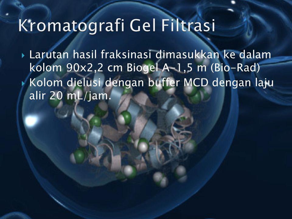 Kromatografi Gel Filtrasi
