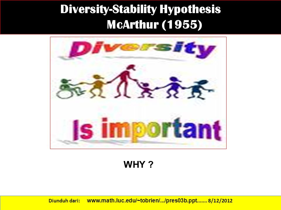 Diversity-Stability Hypothesis