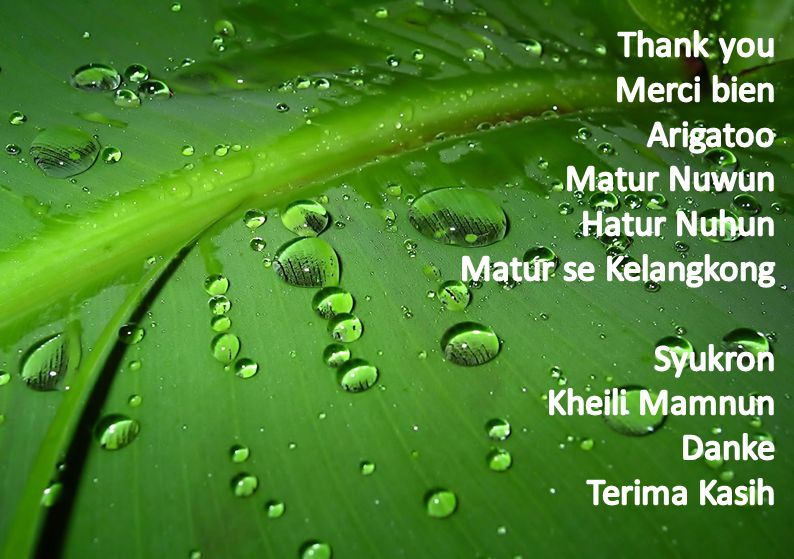 Thank you Merci bien Arigatoo Matur Nuwun Hatur Nuhun.