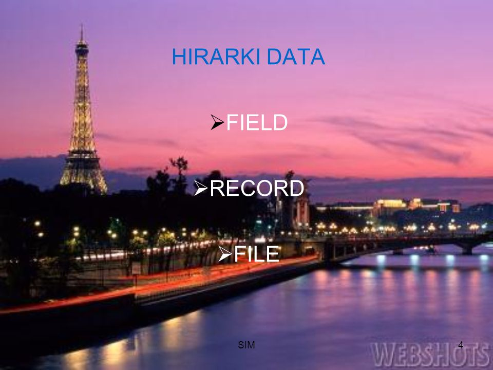 HIRARKI DATA FIELD RECORD FILE