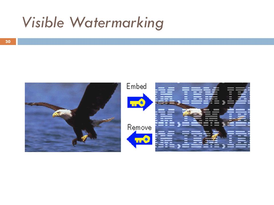 Visible Watermarking