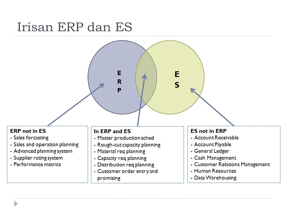 Irisan ERP dan ES ES ERP ERP not in ES Sales forcasting