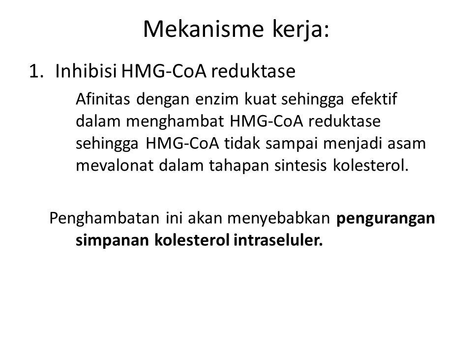 Mekanisme kerja: Inhibisi HMG-CoA reduktase