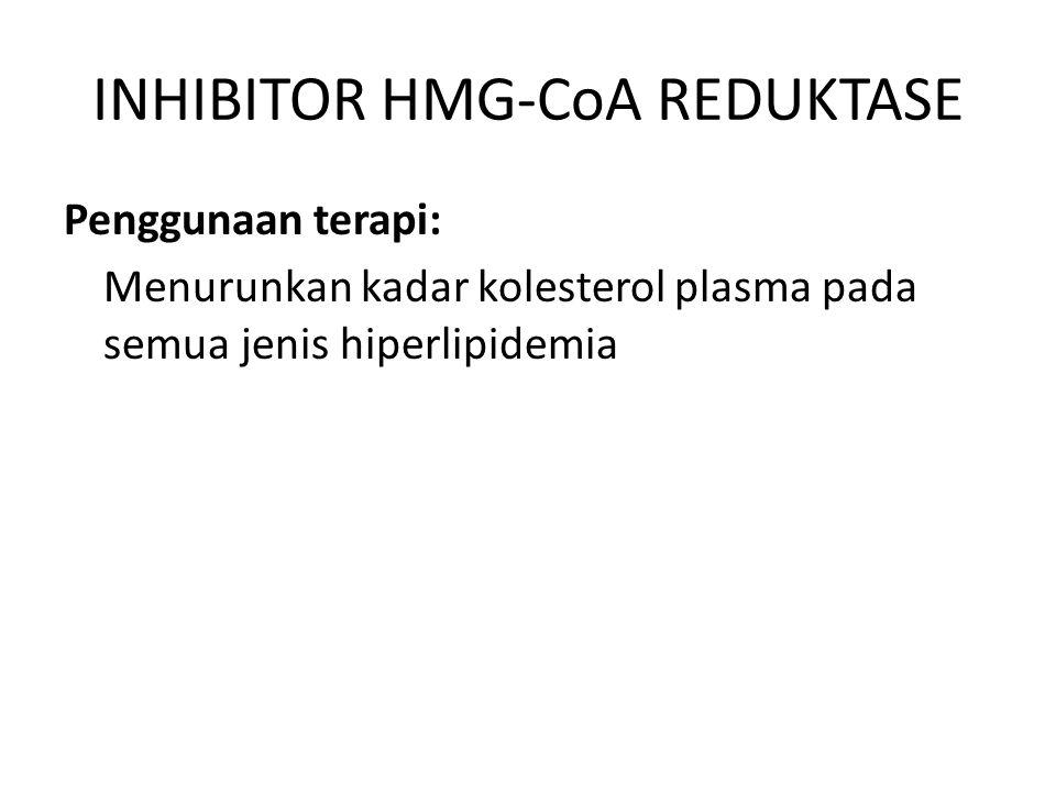 INHIBITOR HMG-CoA REDUKTASE