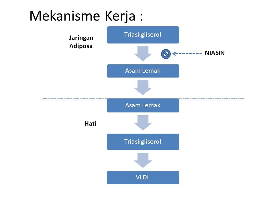 Mekanisme Kerja : Jaringan Adiposa NIASIN Hati Triasilgliserol