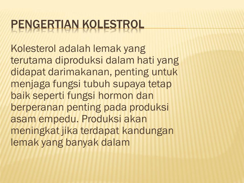 Pengertian kolestrol