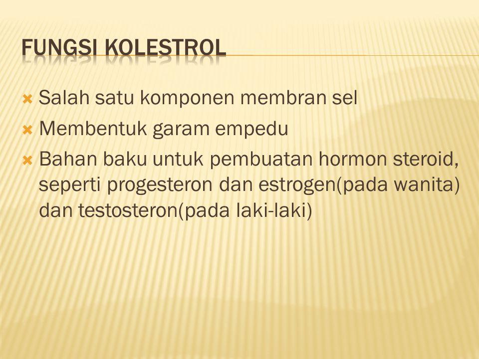 Fungsi kolestrol Salah satu komponen membran sel