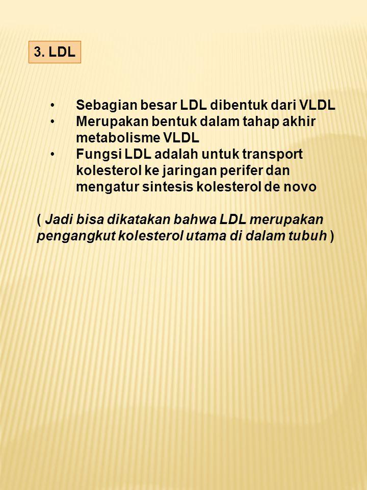 3. LDL Sebagian besar LDL dibentuk dari VLDL. Merupakan bentuk dalam tahap akhir. metabolisme VLDL.