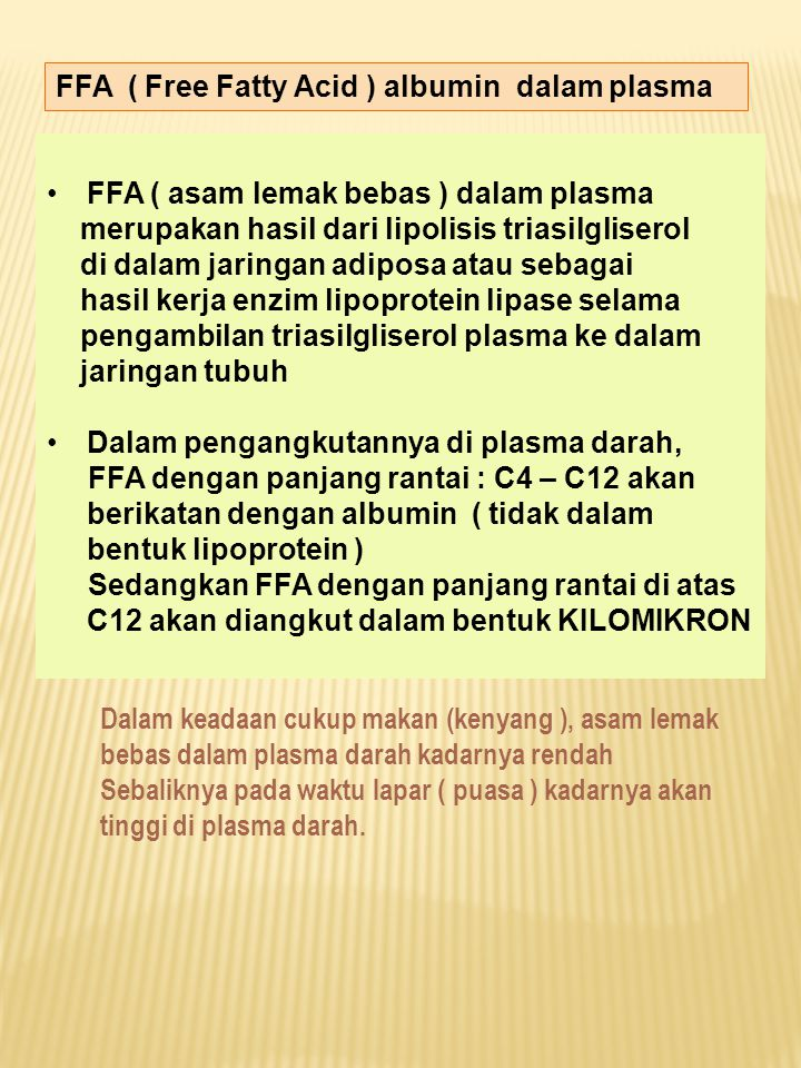 FFA ( Free Fatty Acid ) albumin dalam plasma