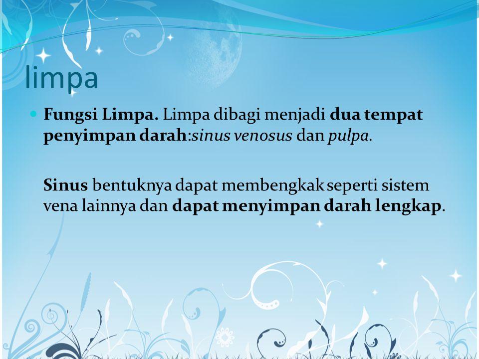 limpa Fungsi Limpa. Limpa dibagi menjadi dua tempat penyimpan darah:sinus venosus dan pulpa.