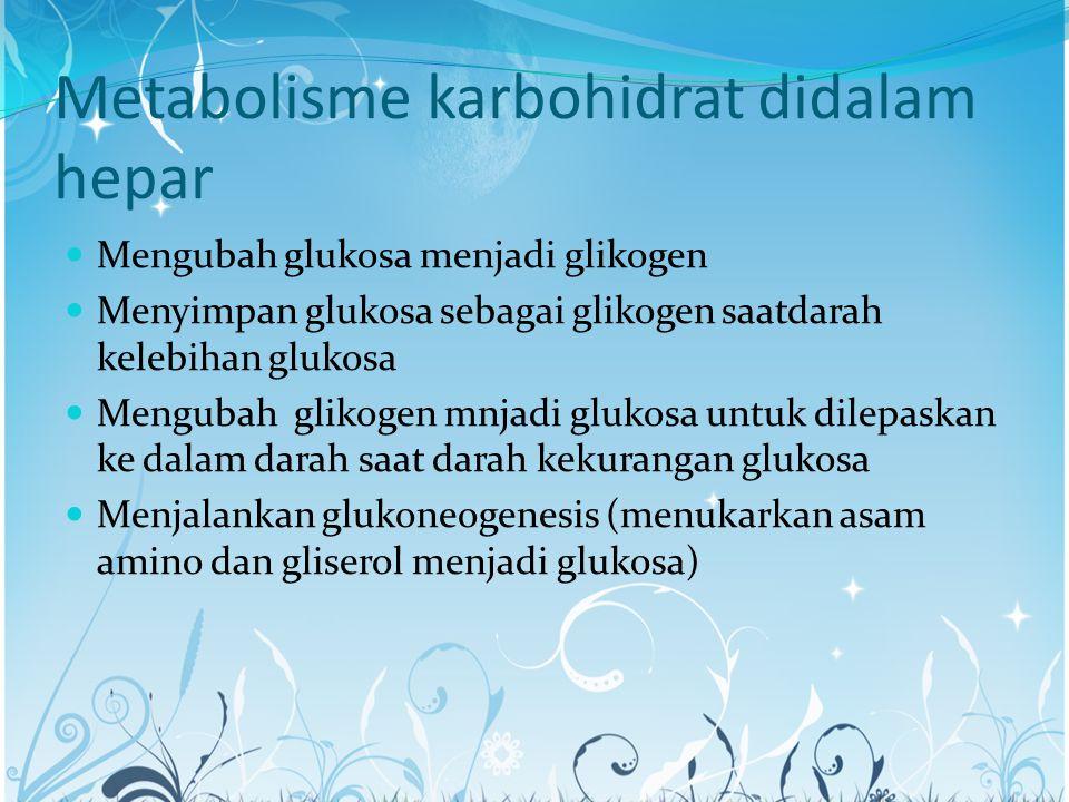 Metabolisme karbohidrat didalam hepar