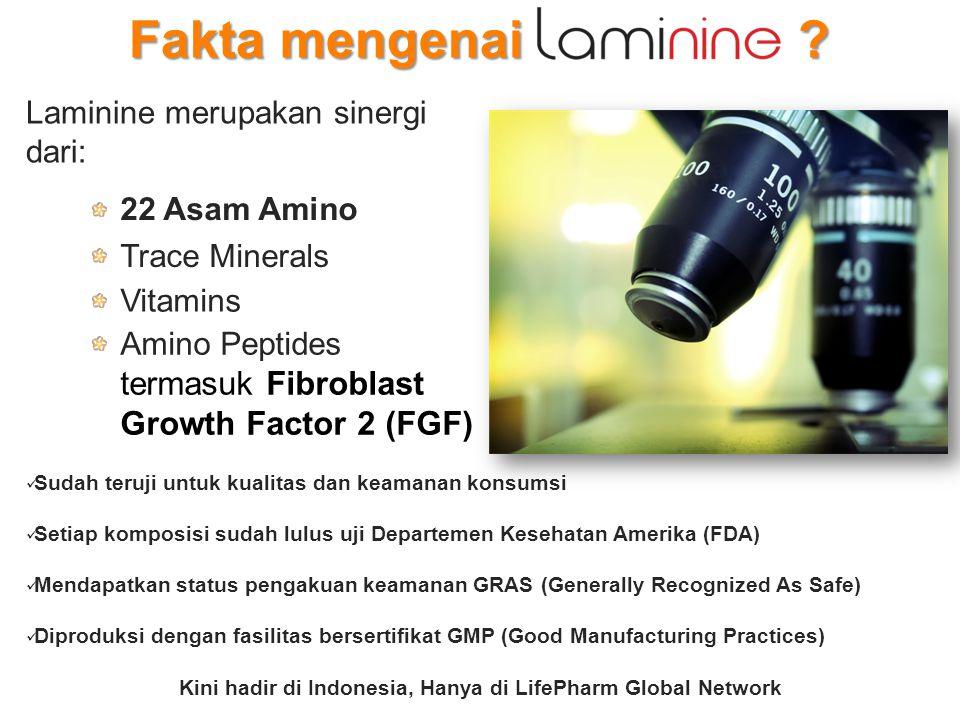 Kini hadir di Indonesia, Hanya di LifePharm Global Network
