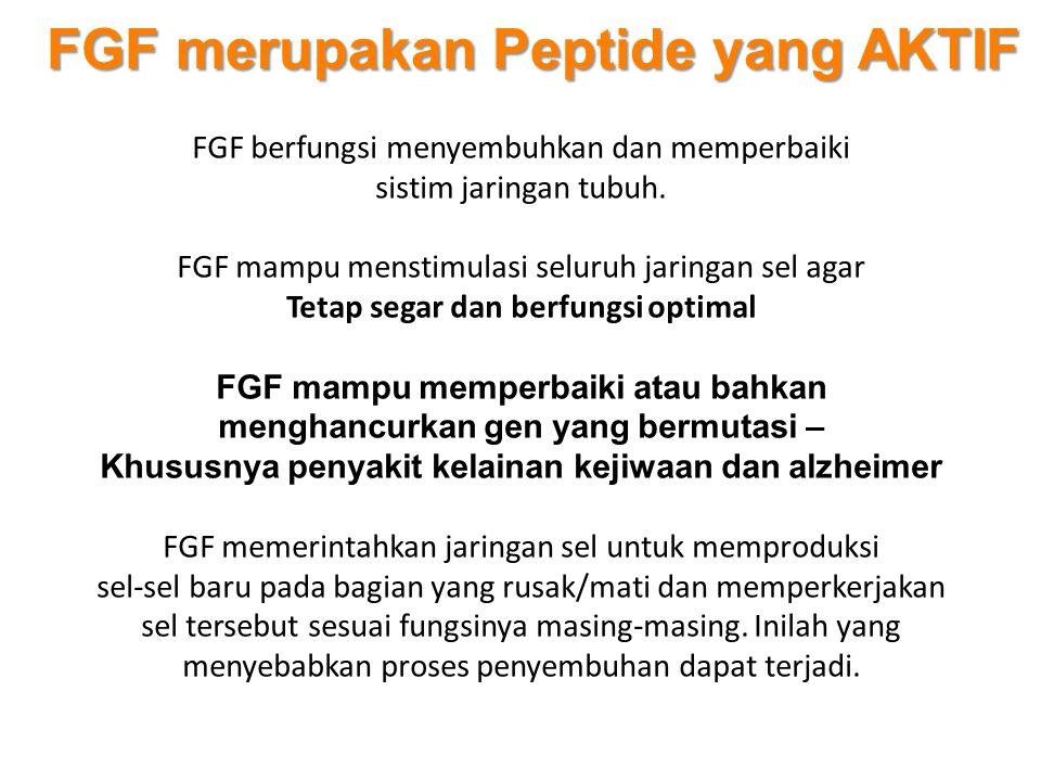 FGF merupakan Peptide yang AKTIF