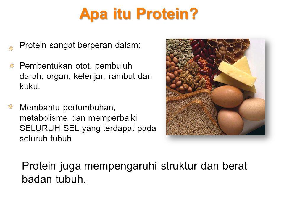Apa itu Protein Protein sangat berperan dalam: Pembentukan otot, pembuluh darah, organ, kelenjar, rambut dan kuku.