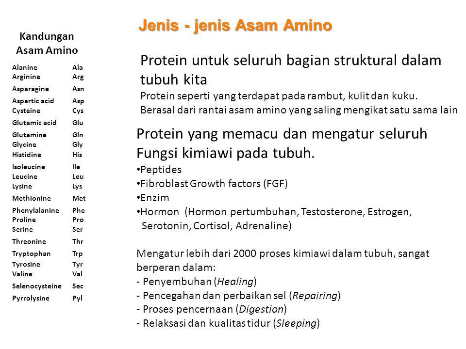Jenis - jenis Asam Amino