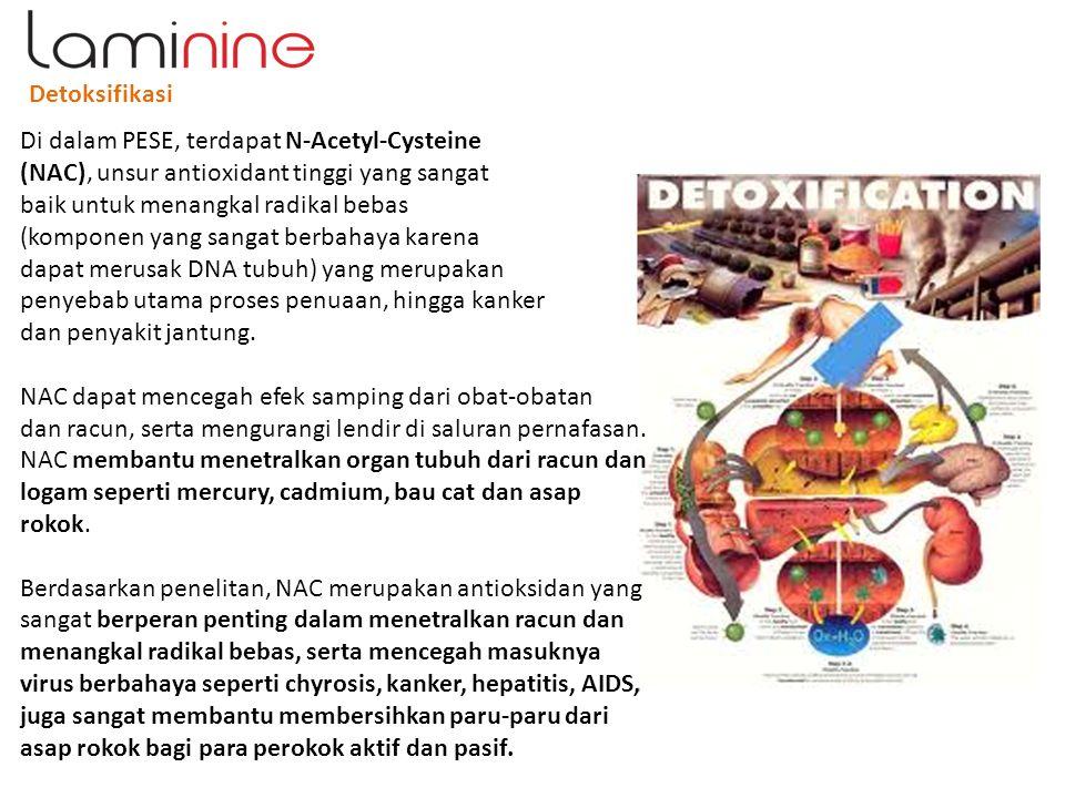 Detoksifikasi Di dalam PESE, terdapat N-Acetyl-Cysteine. (NAC), unsur antioxidant tinggi yang sangat.