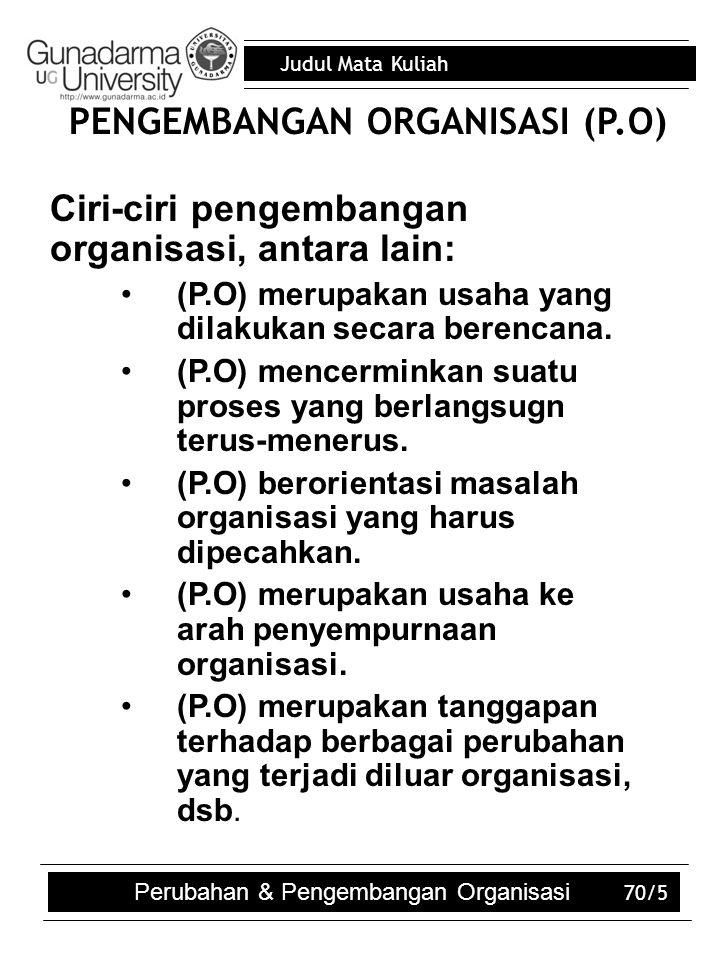 PENGEMBANGAN ORGANISASI (P.O)
