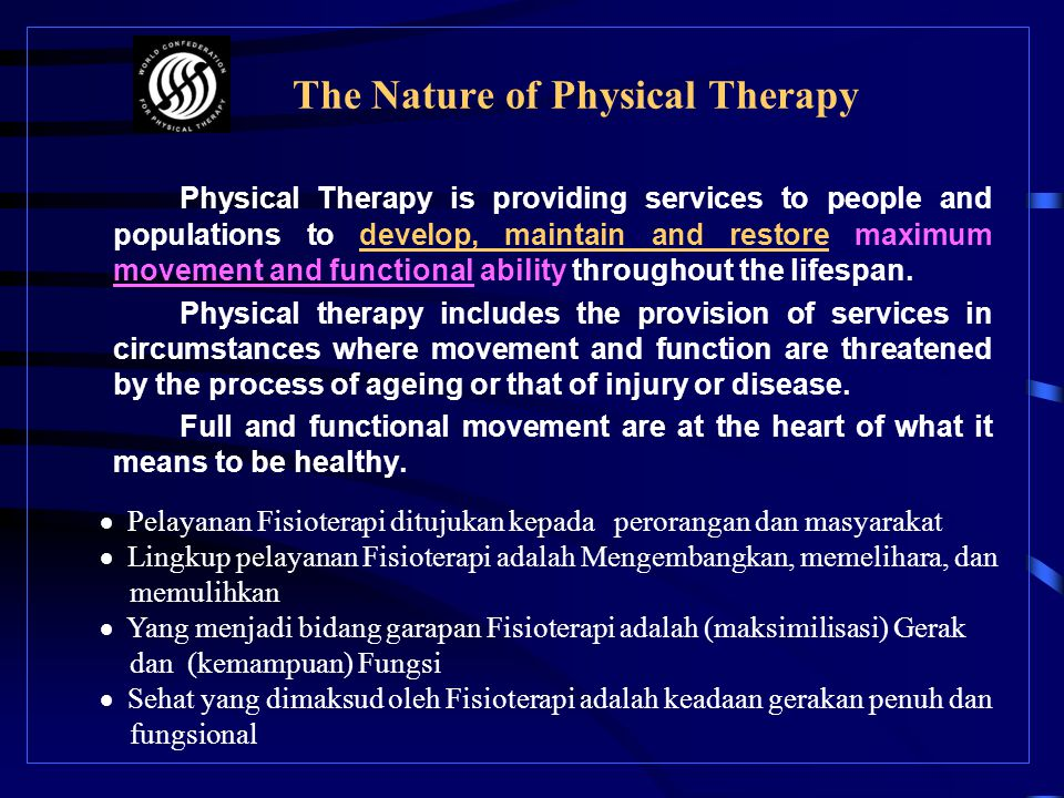 The Nature of Physical Therapy