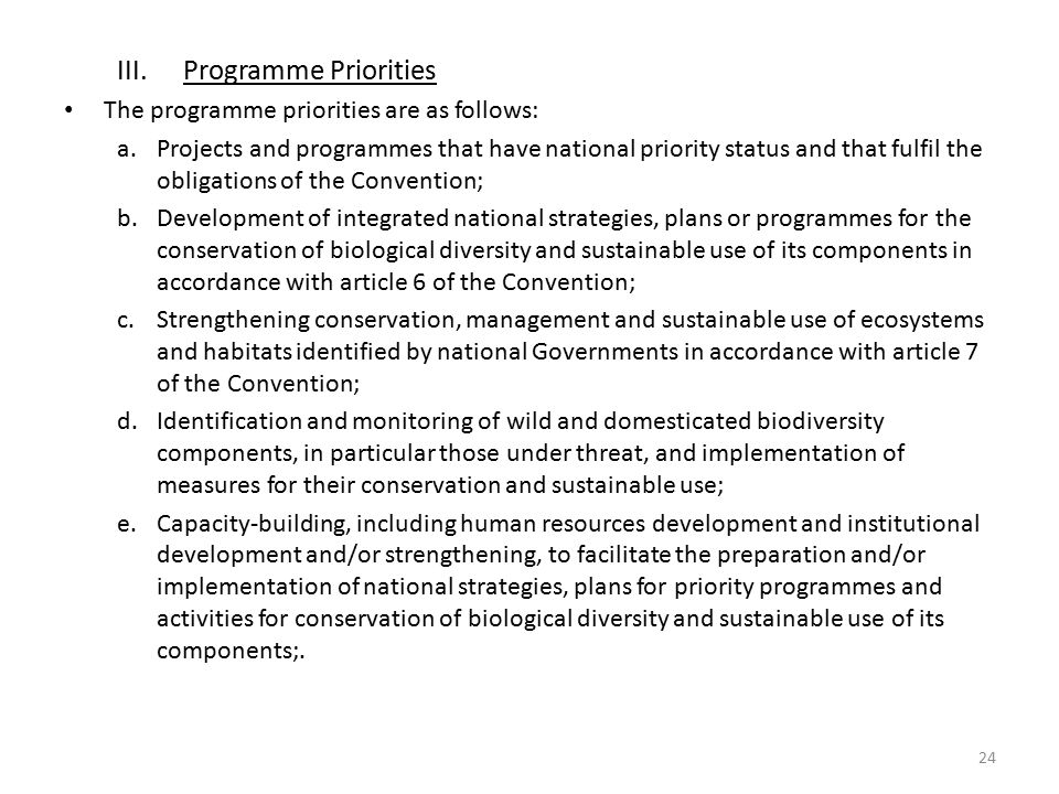 Programme Priorities The programme priorities are as follows: