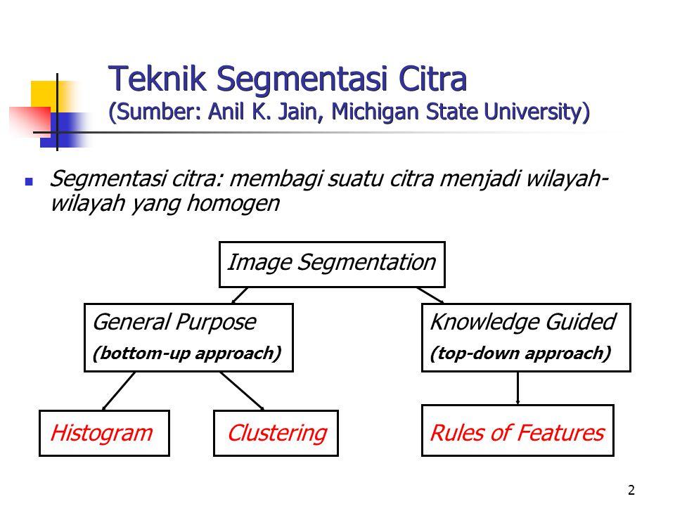 Teknik Segmentasi Citra (Sumber: Anil K