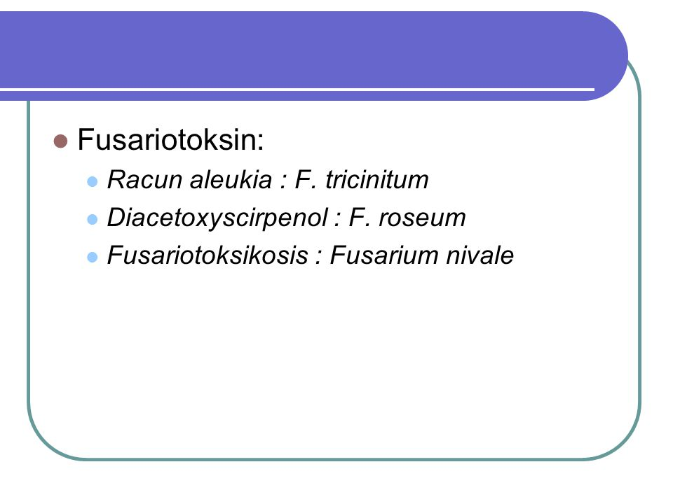 Fusariotoksin: Racun aleukia : F. tricinitum