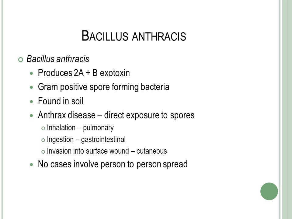 Bacillus anthracis Bacillus anthracis Produces 2A + B exotoxin