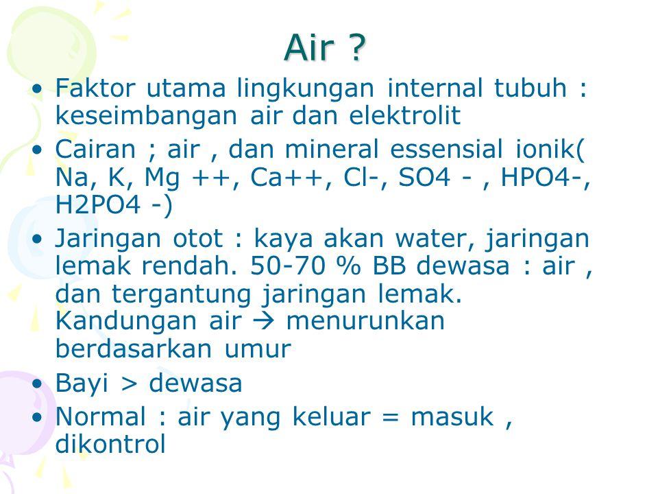 Air Faktor utama lingkungan internal tubuh : keseimbangan air dan elektrolit.