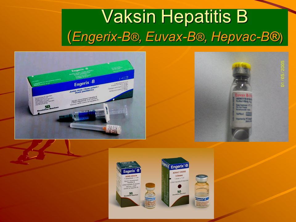 Vaksin Hepatitis B (Engerix-B®, Euvax-B®, Hepvac-B®)