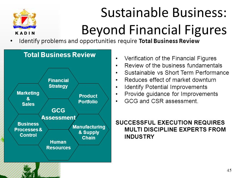 Sustainable Business: Beyond Financial Figures
