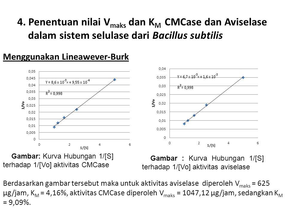 4. Penentuan nilai Vmaks dan KM CMCase dan Aviselase dalam sistem selulase dari Bacillus subtilis