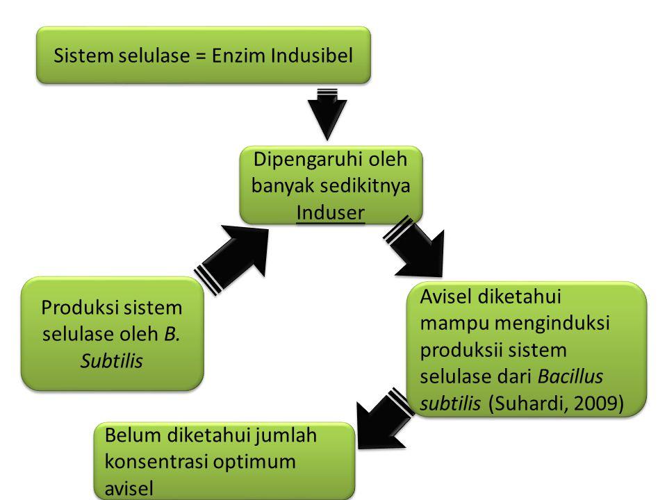 Sistem selulase = Enzim Indusibel