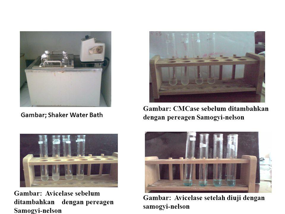 Gambar: CMCase sebelum ditambahkan dengan pereagen Samogyi-nelson